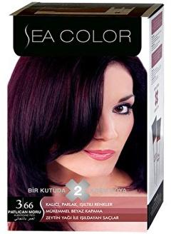 SEA Sea Color 2 Li Saç Boyası 3-66